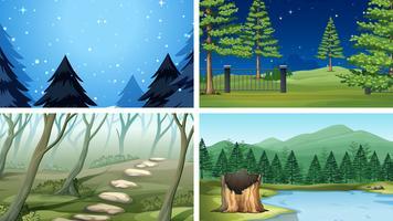 Set of different wood scenes