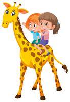 Ragazze in sella a una giraffa su sfondo bianco