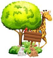 Träskylt med giraff och kaniner