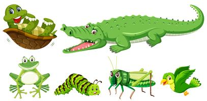 Set of green animal vector
