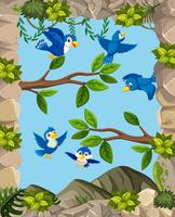 Birds in nature template