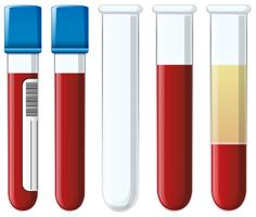 Set of blood collection tubes vector