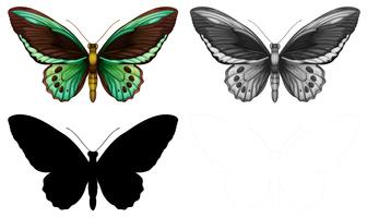 Conjunto de caracteres mariposa