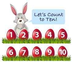 Anzahl der Ester-Kaninchen