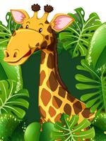 Giraffa nel bosco