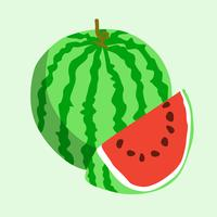 Flat icon watermelon