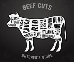 Butcher guide beef cuts vector