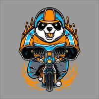 panda riding bicycle hand drawing vector