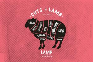 The butcher's Guide, Cut of Lamb