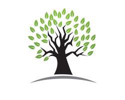 Plantilla de logotipo de vector de tarjeta de identidad de personas verdes de árbol