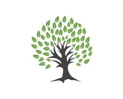 Modèle de logo vectoriel arbre vert personnes identité carte