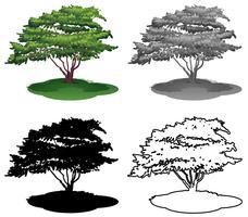 Set of tree on white background