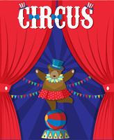 Bear Show Behind Circus Curtain