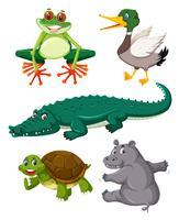 Set av reptiler djur