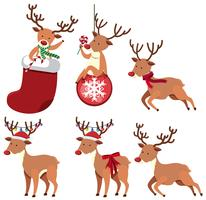 Reindeers and christmas ornaments