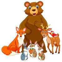Gruppo di animali carini