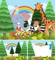Tres escenas de bosque con animales salvajes.