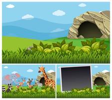 Scene della natura con animali selvaggi dalla grotta