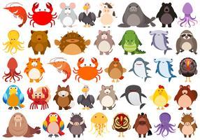 Set med sött djur tecken