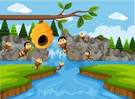 Beehive i vattenfall scen