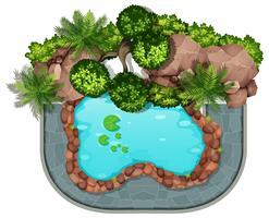 Escena aérea de la naturaleza del estanque