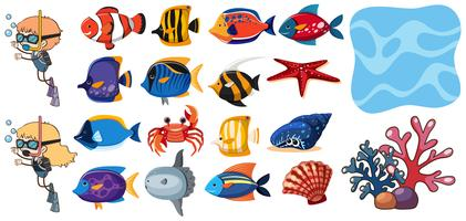 Un set di elementi di pesci e acqua