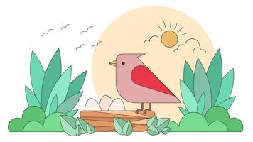 Vector nido