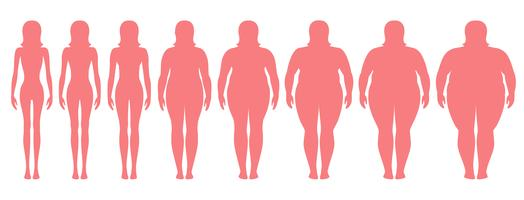 Vektor illustration av kvinnans silhuetter med olika vikt från anorexi till extremt fetma. Body mass index, viktminskning koncept.