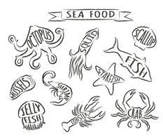 Ejemplos dibujados mano del vector de los mariscos aislados en el fondo blanco, elementos para el diseño del menú del restaurante, decoración, etiqueta. Contornos grunge de animales marinos con nombres.