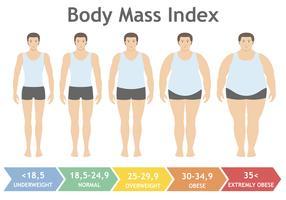 Illustrazione vettoriale di indice di massa corporea da sottopeso ad estremamente obesi in stile piatto. Uomo con diversi gradi di obesità. Corpo maschile con peso diverso.