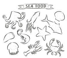 Ejemplos dibujados mano del vector de los mariscos aislados en el fondo blanco, elementos para el diseño del menú del restaurante, decoración, etiqueta. Contornos grunge de animales marinos.