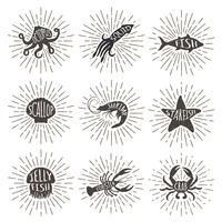 Set of vintage hand drawn sea animals with sun rays. Sea food icons on sunburst background.
