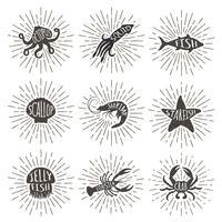 Conjunto de animales de mar dibujado mano vintage con rayos del sol. Iconos del alimento de mar en fondo del resplandor solar.