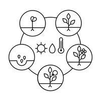 Fasi di crescita delle piante Icone di arte di linea. Illustrazione di stile lineare isolato su bianco. Piantare frutta, processo di verdure. Stile di design piatto.