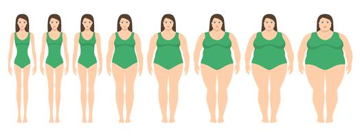 Illustration vectorielle de femmes de poids différent de l'anorexie à l'obésité extrême. Indice de masse corporelle, concept de perte de poids.