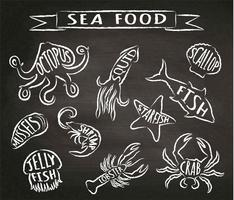Ilustrações do vetor do contorno do giz do marisco no quadro-negro, elementos para o projeto do menu do restaurante, decoração, etiqueta. Giz contornos texturizados grunge de animais marinhos com nomes.