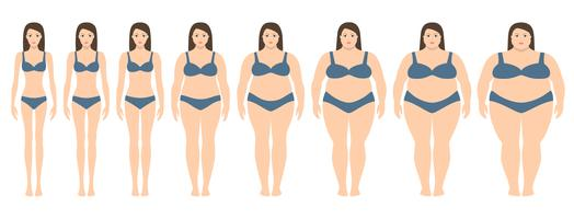 Ilustración vectorial de mujeres con diferente peso desde la anorexia hasta la obesidad extrema. Índice de masa corporal, concepto de pérdida de peso.