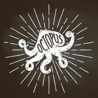 O silhoutte do giz do polvo com sol irradia no quadro-negro. Bom para design de menu de restaurante de frutos do mar, decoração, logotipos ou cartazes.