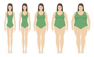 Kroppsmassindex vektor illustration från undervikt till extremt fetma. Kvinna silhuetter med olika fetma grader.