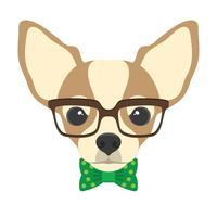 Portrait of chihuahua dog with glasses and bow  tie in flat style. Vector illustration of Hipster dog  for cards, t-shirt print, placard.