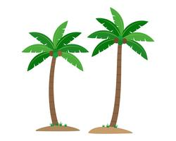 Coconut palm trees isolated on white background - Vector illustration