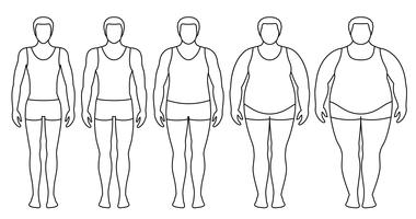 Body mass index vector illustration from underweight to extremely obese. Man contours with different obesity degrees. Male body with different weight.