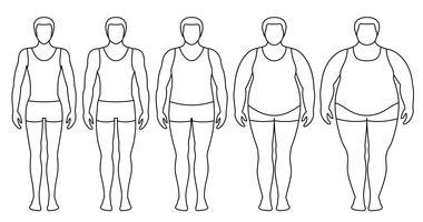 Ilustración vectorial de índice de masa corporal desde bajo peso hasta extremadamente obeso. Contornos de hombre con diferentes grados de obesidad. Cuerpo masculino con diferente peso.