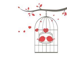 coppia di uccelli sul ramo