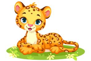Baby leopard cute cartoon vector