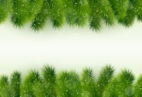 Christmas greeting with fir tree vector