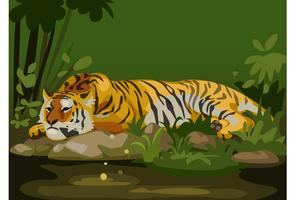 tiger in jungle vector