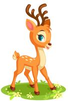 Cute baby deer in pose