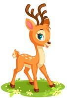 Lindo bebé ciervos en pose