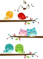 Vogels die op de tak zingen